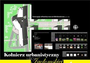 Natalia Brałkowska: Kołnierz urbanistyczny ulicy Igołomskiej w Krakowie